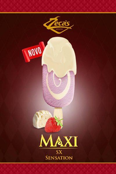 maxi-leg2